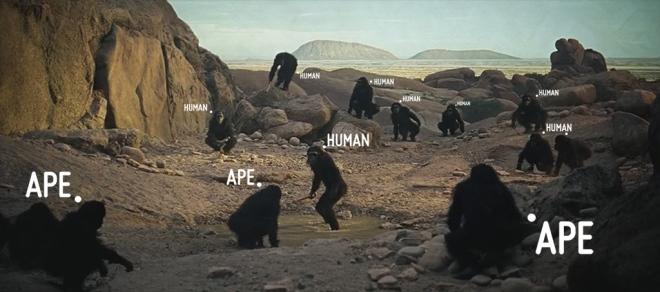 2001 A Space Odyssey: Human Vs. Ape